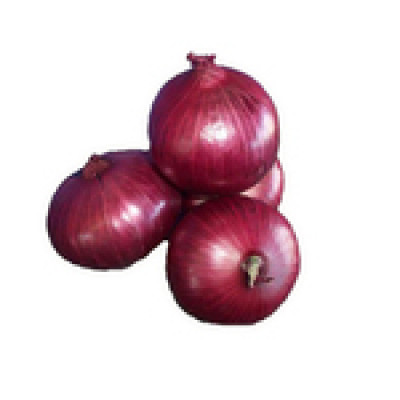 Onions Spanish Red 250g