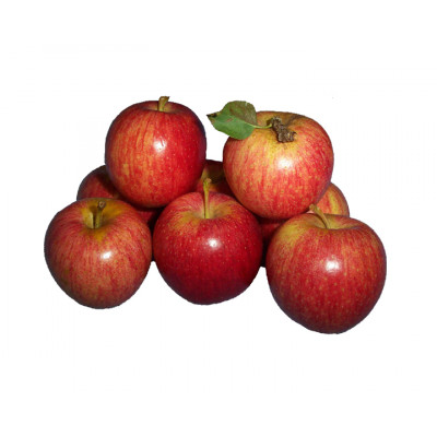 Apples 1 kg Bag SPECIAL