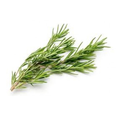 Herbs Rosemary bunch