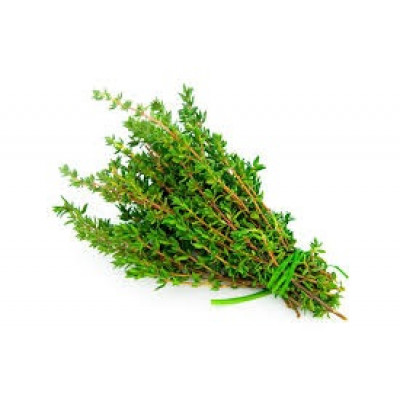 Herbs Thyme bunch