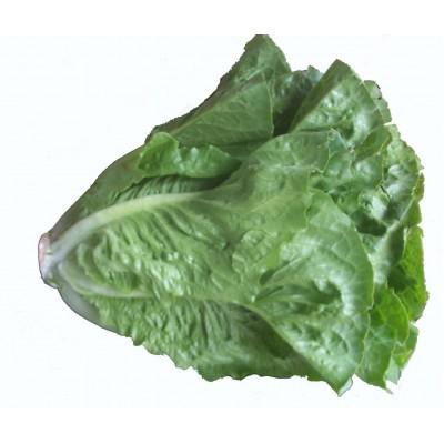 Lettuce Cos each