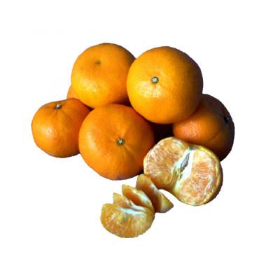 Mandarins Murcott 500g