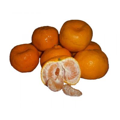 Mandarins Imperial Large kg SPECIAL