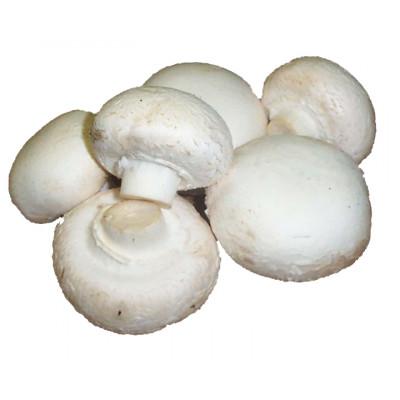 Mushrooms Button 100g