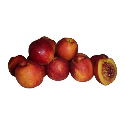 Nectarines Yellow 500g