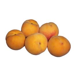 Peaches Golden Queen kg SPECIAL