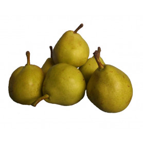 Pears Jose kg SPECIAL