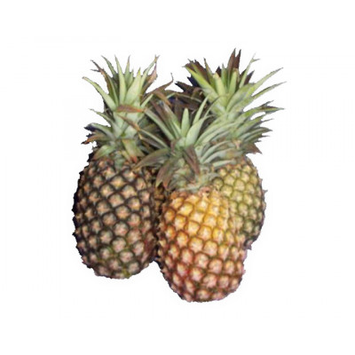 Pineapples Smooth Leaf Local each