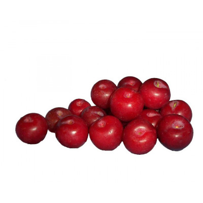 Plums Red 500g