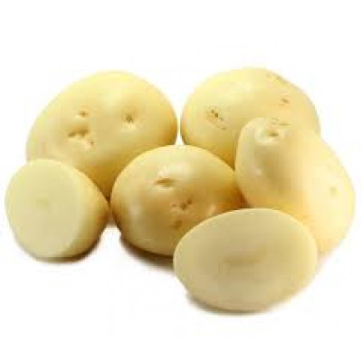 Potatoes White Large Washed Kg