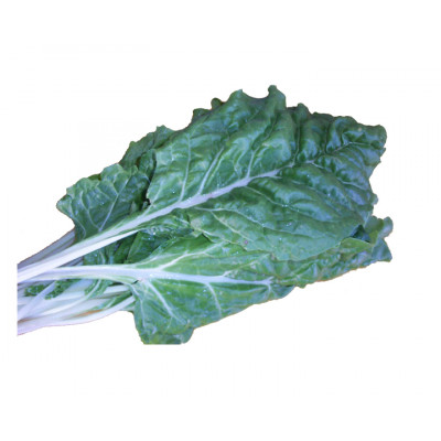 Silverbeet bunch