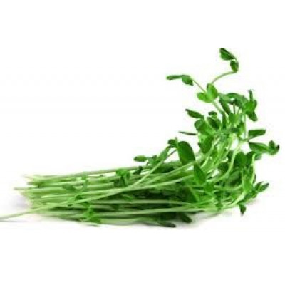 Sprouts Snow Pea 100g punnet