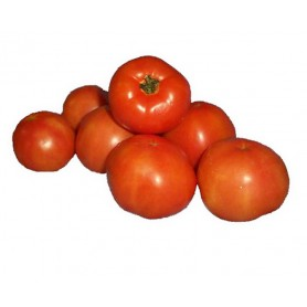 Tomatoes Gourmet  500g